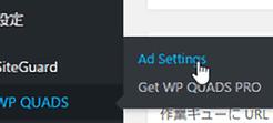 WP QUADS - Quick AdSense Reloaded_1
